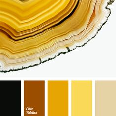 amber, beige, black, chocolate, color, color combinations, corn, egg yolk color, monochrome color palette, shades of brown, shades of yellow, Yellow Color Palettes, yellow monochrome color palette.