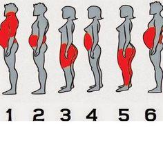 Így fogyhatsz napi 1 kilót torna nélkül: csak ez az egyszerű keverék kell hozzá - Blikk Rúzs Kili, Medical, Health, Projects, Log Projects, Blue Prints, Health Care, Medicine, Med School