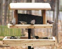 Wood Country Large 4x4 Mount Seed Catcher Platform w/Removable Trays, Platform Bird Feeders
