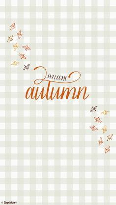 Autumn grey gingham iphone background lock screen phone wallpaper