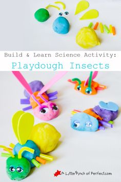 Build and Learn Science Activity: Playdough Insects | A Little Pinch of Perfect