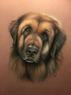 Leonberg pastel Pastel animalier - peinture chien - chien au pastel - artiste animalier