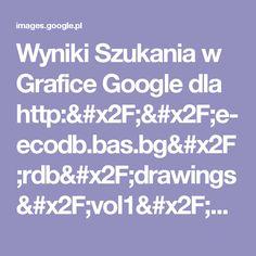 Wyniki Szukania w Grafice Google dla http://e-ecodb.bas.bg/rdb/drawings/vol1/Lilalban.jpg