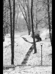 #Parco Lambro #Milano. #winter #Italy #Urban #Nature