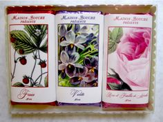 "Maison Bouche ""Botanicals"" Trio Collection including Strawberry, Violet and Rose with Candied Mint Leaves bars in dark chocolate."