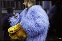 now THAT is a fur. Paris.