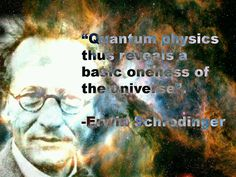 Quantum physics thus reveals a basic oneness of the universe.   ~Erwin Schrodinger