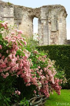 The ruins of a 12th-c. abbey give structure to the rose garden.  GARDEN DESIGN BY LEVY-ALBAN