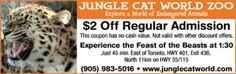 Jungle Cat World Coupon - $2 off admission Ontario Attractions, Jungle Cat, Enjoy Your Vacation, Coupons, Cats, World, Gatos, Coupon, The World
