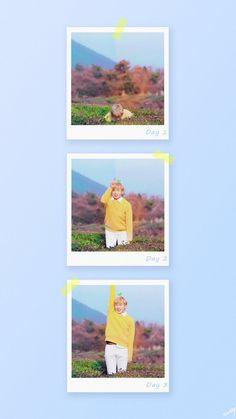 Vanilla Sky, Polaroid Frame, Daniel K, Love Me Forever, Aesthetic Iphone Wallpaper, Boyfriend Material, My Love, Park, Cute