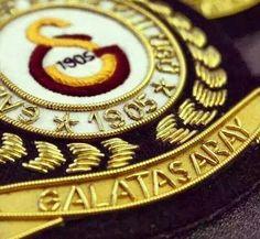 Forever Galatasaray Football Soccer, Istanbul, Lions, Class Ring, Iphone Arkaplanları, Disney, Flowers, Weapon, Sport