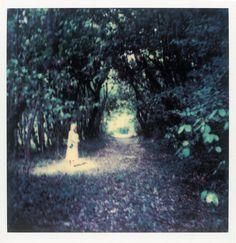 Polaroid by Andrei Tarkovsky Lot 13 - Polaroid 5