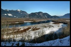 This photo from British Columbia, Western is titled 'The Muddy Fraser'. Fraser Valley, British Columbia, Westerns, North America, Canada, Mountains, Nature, Travel, Naturaleza