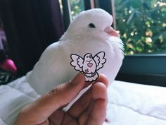 Adorable and for a great cause!  This pin is a thank you gift for donations made to Palomacy Pigeon & Dove Adoptions.  They rescue and rehome unwanted and abandoned domestic pet pigeons and doves that would otherwise not survive or be euthanized in a shelter. <3
