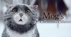 English    is    FUNtastic: Mog's Christmas Calamity | Video