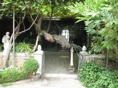 L'entrée-sortie du jardin Nani-Lucheschi