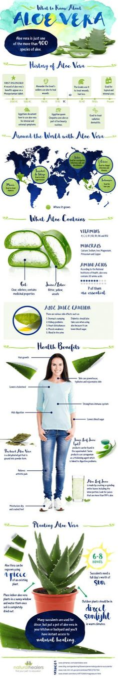Aloe vera has many benefits for your health in general, including your skin, and hair. In this infographic, you will find more about aloe vare history and uses. Be Natural, Natural Living, Natural Healing, Natural Skin Care, Natural Beauty, Natural Foods, Aloe Vera Uses, Aloe Vera For Skin, Forever Living Products