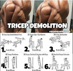 Roelly winklar triceps workout routine