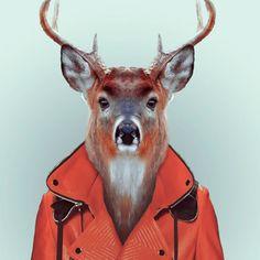 Zoo Portraits :: fotografías de Yago Partal