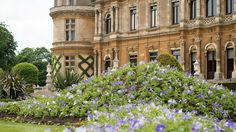 Light blue petunias give colour to the parterre this summer © National Trust / Waddesdon Manor / Photo Derek Pelling