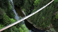 Pedestrian bridges are going to cool new heights, turning the need to get from here to there into an adventure.