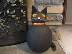 pumpkin black cat