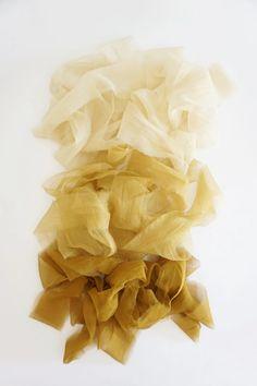 Gossamer Honey Ribbon – Tono + co Colour Pallete, Colour Schemes, Color Combos, Honey Colour, Color Studies, Colour Board, Golden Color, Beauty Art, Mellow Yellow