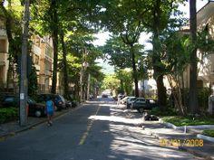 Surpreendam-se com o imperdível Grajaú, Rio/RJ (IDH: 0, 938) – Um dos bairros mais arborizados do Rio de Janeiro, localizado na Zona Norte. - SkyscraperCity