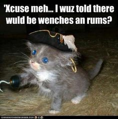 Wenches! And Rums!