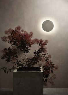 The Eclipse 300 Round in Concrete by Astro Lighting. Exterior Lighting, Outdoor Lighting, Wall Lights, Ceiling Lights, Wall Lamps, Downlights, Earth Tones, Brick Wall, Lamp Light