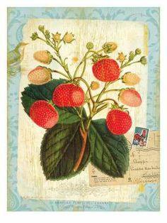 strawberry art by Bessie Pease Gutmann