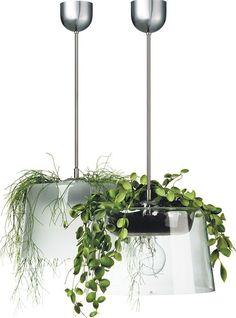 Planter + Lamp = Plamp?     #lighting, #plants, #planter, #pendant