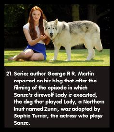 Game of Thrones Facts - I knew this before I watched the show so I& always tried to like her character Game Of Thrones Facts, Game Of Thrones Quotes, Game Of Thrones Wolves, Tyron Lannister, Jon Snow, Daenerys Targaryen, Khaleesi, Dire Wolf, Bubbline