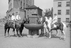 National Humane Alliance Fountain: Between 1906 and 1912, the National Humane Alliance presented somewhere around 125 Horse Watering Troughs to cities and towns across the country, including Denver. The Denver fountain is located in a small, paved triangle in the Civic Center District, where Colfax Avenue, Tremont Street, and 13th intersect. Although the fountain was refurbished in 2010, unfortunately, the fountain no longer works.