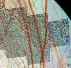 Evidence For Icy Plate Tectonics Found On Europa - Geology, Astronomy Facts About Saturn, Saturns Moons, Moon Surface, Science Articles, Classical Antiquity, Plate Tectonics, A Child Is Born, University Of Arizona, Anatomy And Physiology
