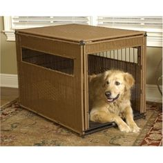 Wicker Dog Crates are becoming one of the most popular dog crates.