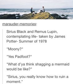 """Sirius, you really know how to ruin a moment."""