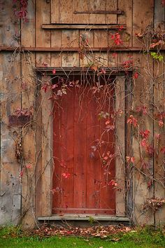 Door in Autumn
