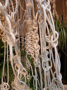 rope knots // Anthropologie Display awesome for boat display Window Display Design, Window Displays, Anthropologie Display, Retail Windows, Shop Windows, Stage Design, Set Design, Visual Display, Store Displays