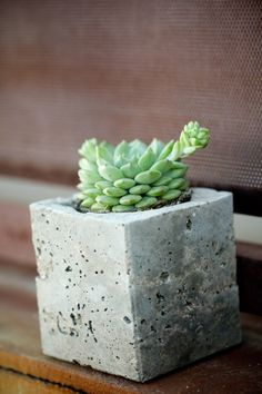 Emma hosts an urban garden party complete with DIY cement planters. Diy Cement Planters, Concrete Cement, Concrete Crafts, Garden Planters, Planter Pots, Upcycled Crafts, Outdoor Landscaping, Craft Sale, Diy Projects To Try