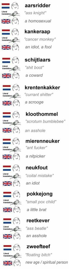 Humor nederlands dutch the netherlands 57 Ideas French Swear Words, Dutch Words, Sarcasm Quotes, Sarcasm Humor, Funny Quotes, Funny Humor, Learn Dutch, Learn French, Writing
