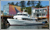 Marine Discovery Tours, Newport