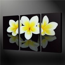 3 Piece Wall Art Painting Pictures Print On Canvas Black And White Yellow Frangipani Flowers The Picture Oil Home Decoration(China (Mainland))