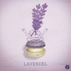 Lavendel Macaron