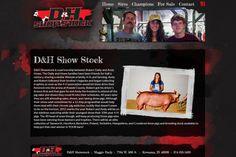 D&H Showstock, website design, livestock website, black and red design, grunge