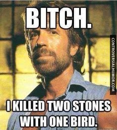 Two Stones With One Bird - http://controversialhumor.com/two-stones-with-one-bird/