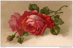 Catherine Klein pintora - Buscar con Google