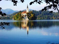 Lake Bled Lake Bled is probably most tourist spot in Slovenia. There's an island on the lake, above the lake is Bled Castle, around . Visit Slovenia, Slovenia Travel, The Places Youll Go, Places To See, Antigua Yugoslavia, Places To Travel, Travel Destinations, Bohinj, Julian Alps