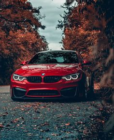 Amazing Cars You Need to see Bmw M4, Automotive Photography, Car Photography, Bugatti, Ferrari, Lamborghini Huracan, Supercars, Automobile, Bmw Wallpapers