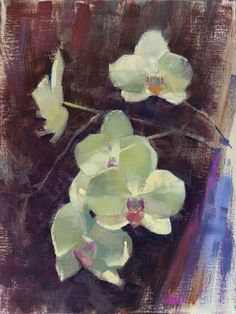 """Another floral from the Lewis Ginter Botanical Garden, painted during the Brazier Studio and Gallery Inc.'s Plein Air Richmond. """"Emerging Orchids"""" (oil on linen, 12""""x16""""). Available for purchase. #patricksaunders #patricksaundersfineart #patricksaundersfinearts #patsaunders #pleinairstreaming #saundersfinearts #pleinairrichmond #richmond #virginia #floral #orchid #orchids #floralpainting #flowerpainting"""